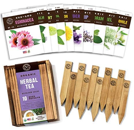 Organic Herbal Tea Seed Selection