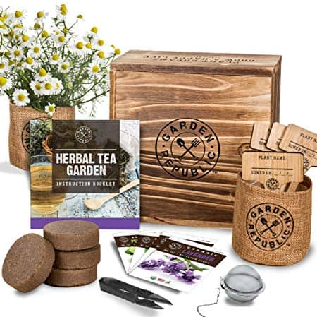 Herbal Tea Garden Kit - Everything You Need