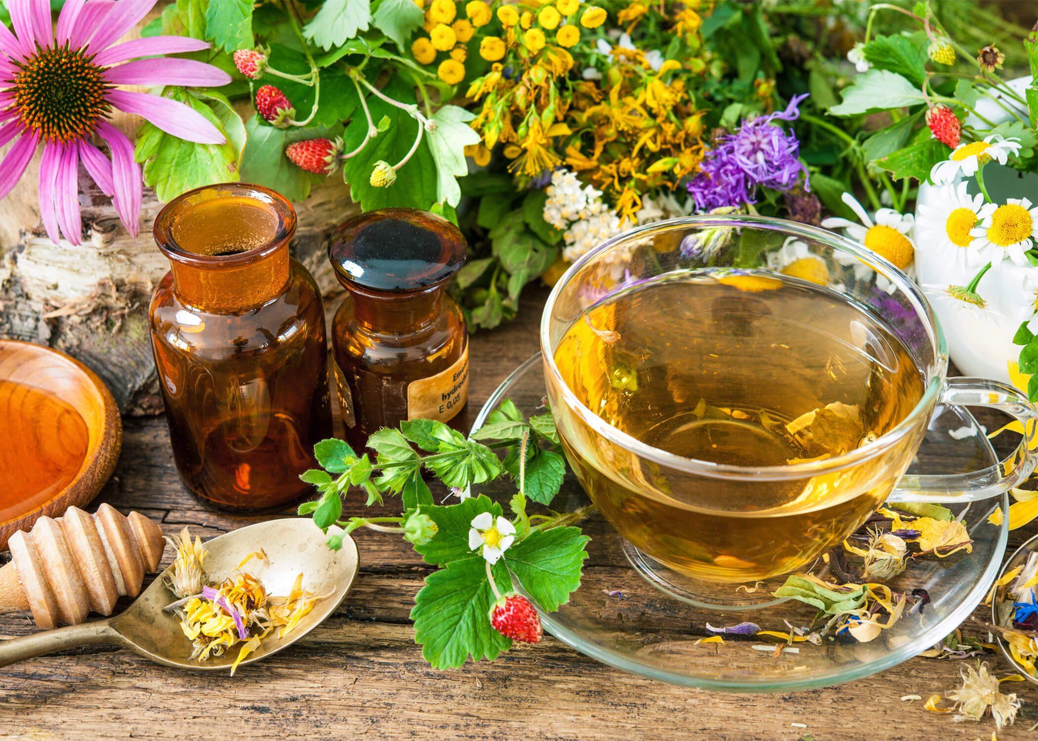 How To Grow Your Own Herbal Tea Garden