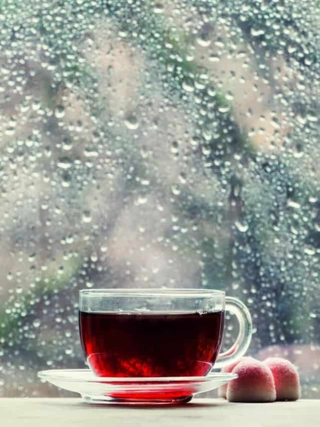 Is black tea fermented? in a glass cup in front of a rainy window