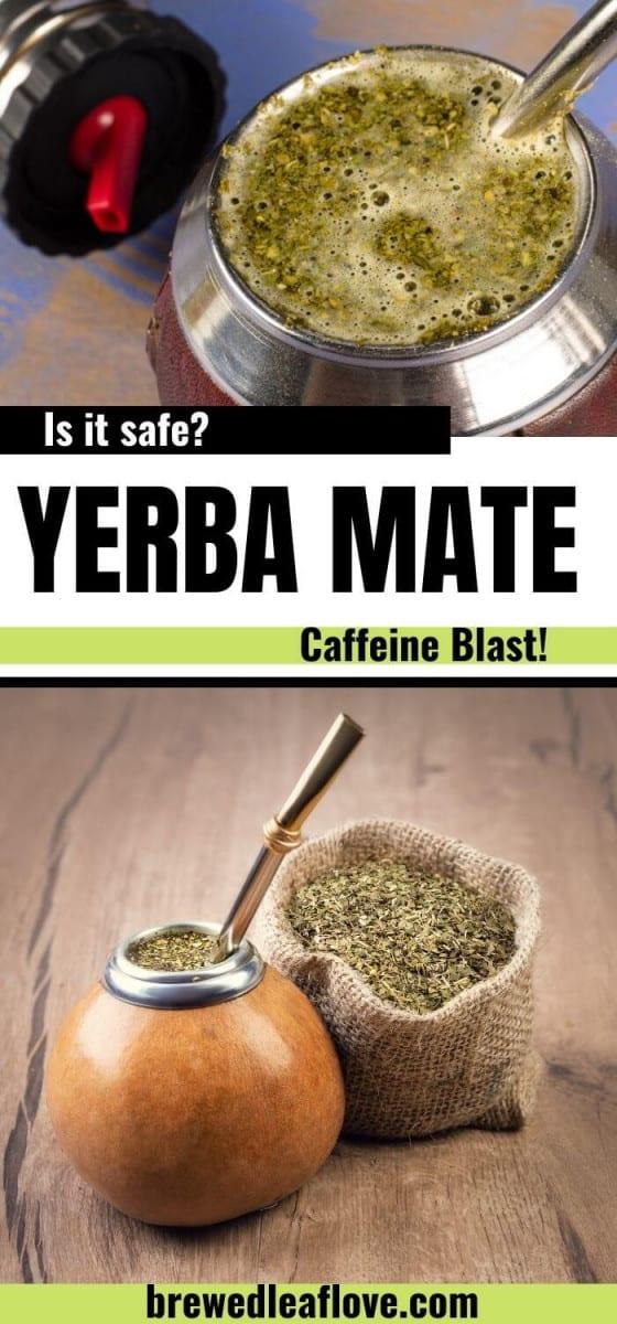 what is Yerba mate