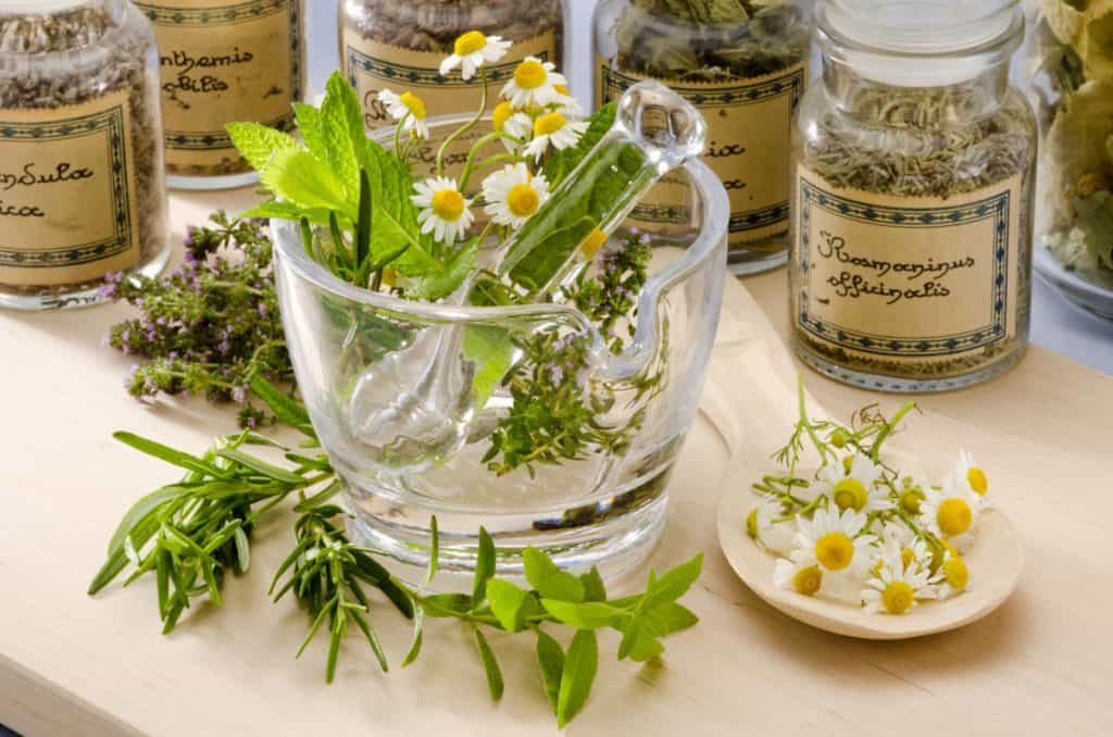 ingredients for an herbal tisane in a glass jar