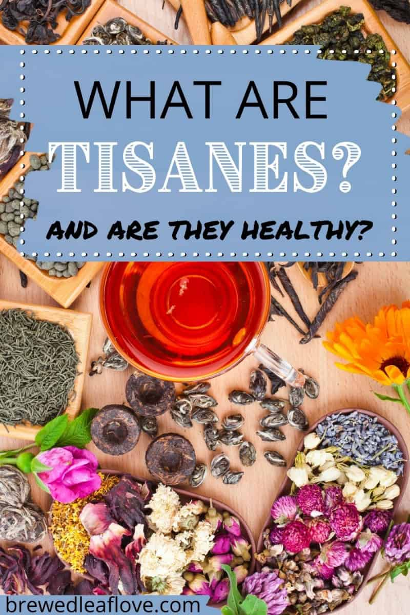 tisane graphic of different herbal plants