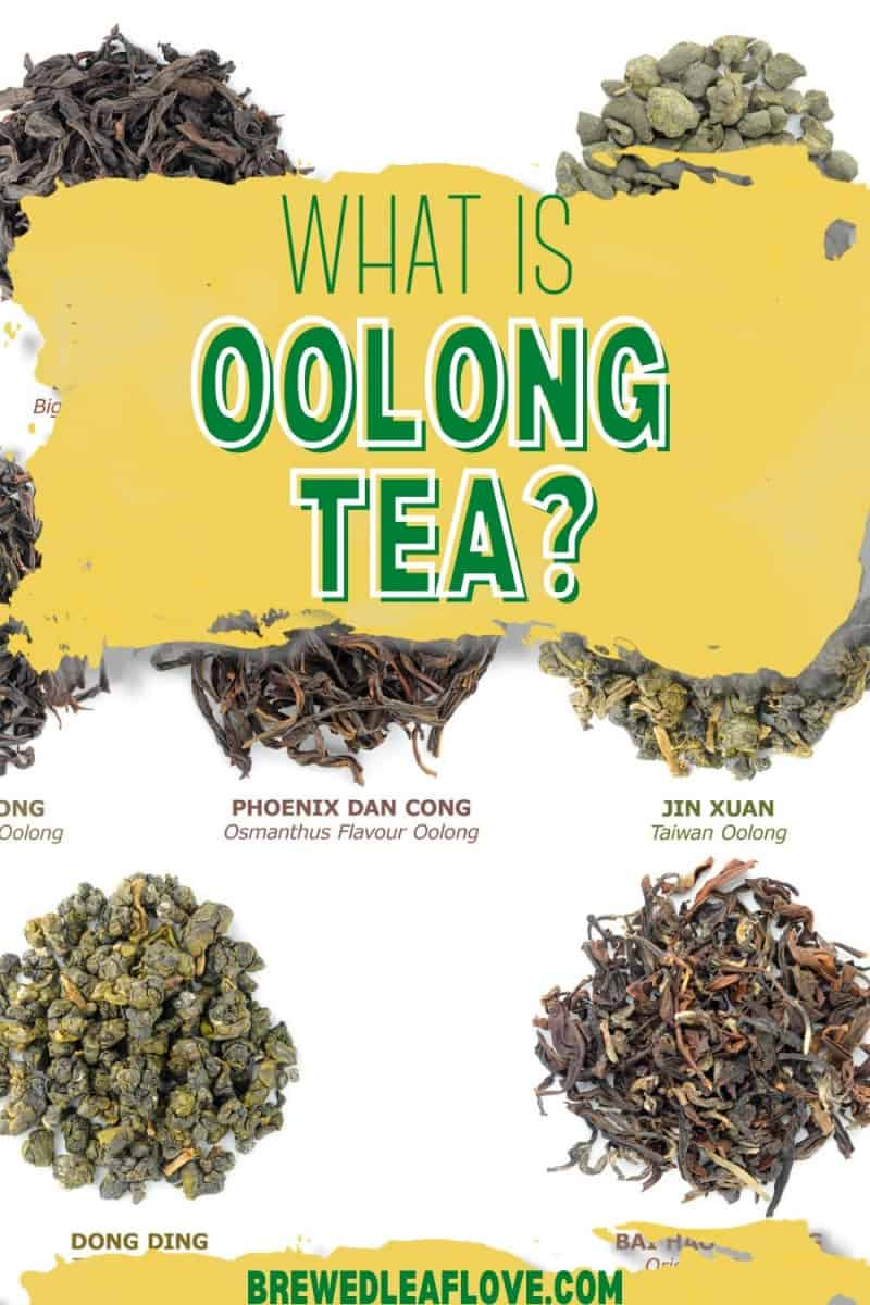 what is oolong tea graphic with photos of piles of different oolong teas