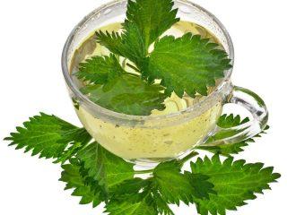 herbal teas for hypothyroidism