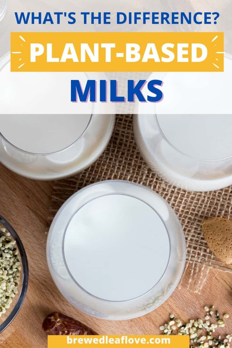 Plant-Based Milk vs Cow's Milk graphic
